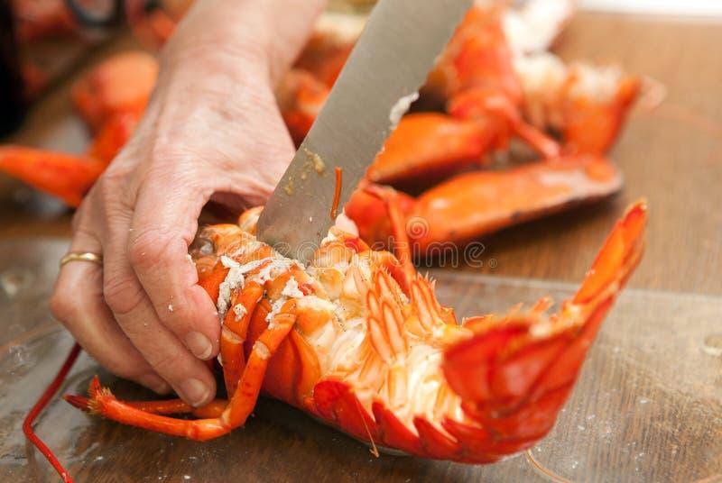 煮熟的龙虾 免版税库存照片