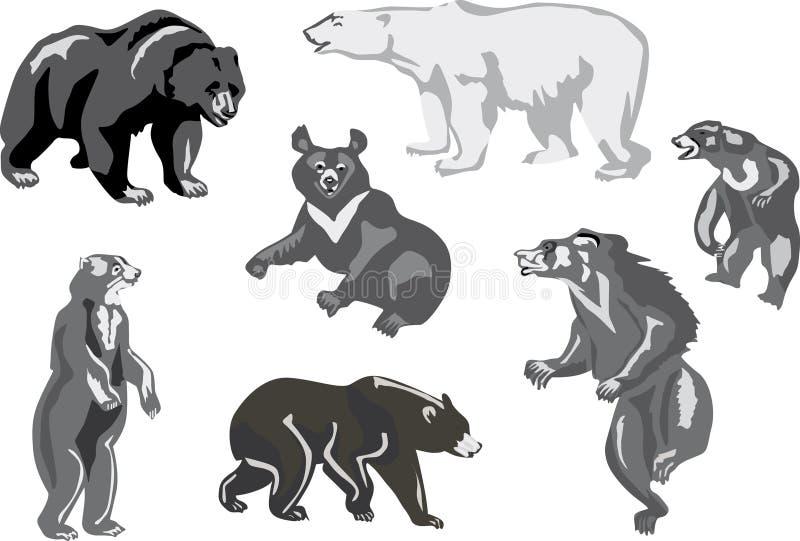 熊查出七白色 向量例证