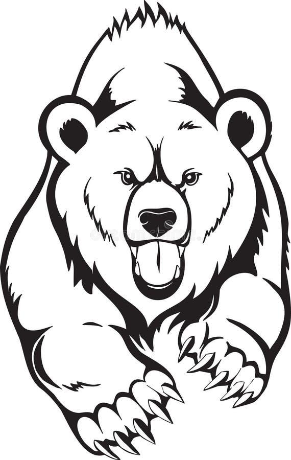 熊棕色北美灰熊 皇族释放例证
