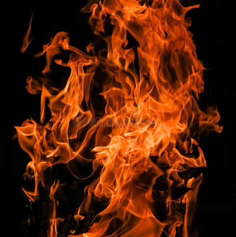 熊熊火海红火黑色背景. 火热, 墙纸.