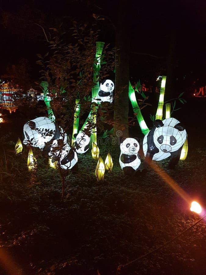 熊猫灯家庭在公园 库存图片