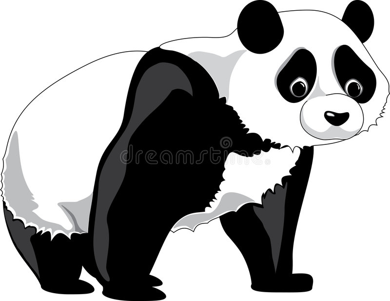 熊猫 皇族释放例证