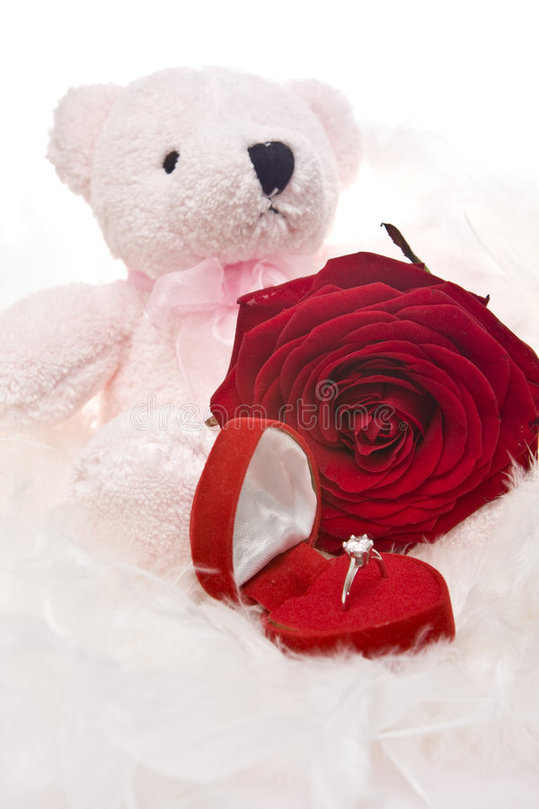 熊红色环形玫瑰色女用连杉衬裤 免版税库存图片