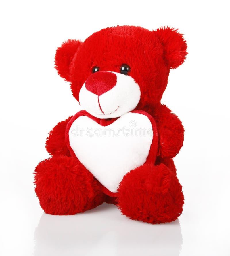 熊重点红色女用连杉衬裤 免版税图库摄影