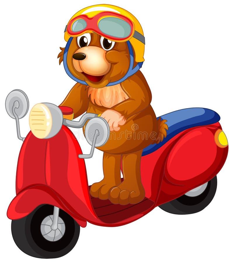 熊骑马滑行车 向量例证
