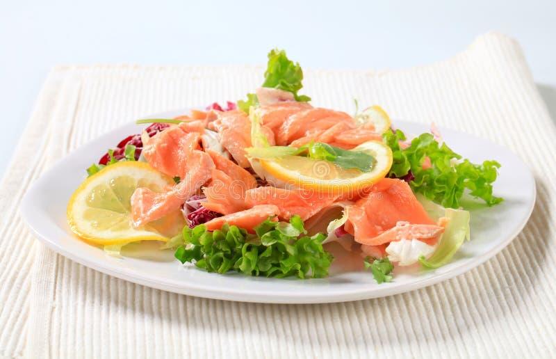 熏制的鳟鱼沙拉 免版税库存照片
