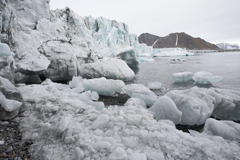 熔化的北极冰川 免版税库存照片
