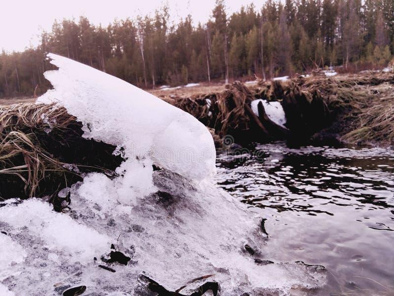 熔化雪 免版税库存图片