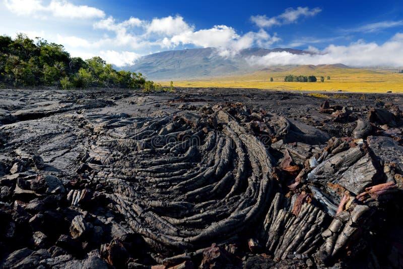 冻熔岩毛面在冒纳罗亚火山火山爆发以后的在大岛,夏威夷 免版税图库摄影