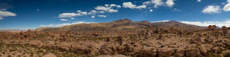 熔岩流全景在阿塔卡马沙漠 免版税图库摄影