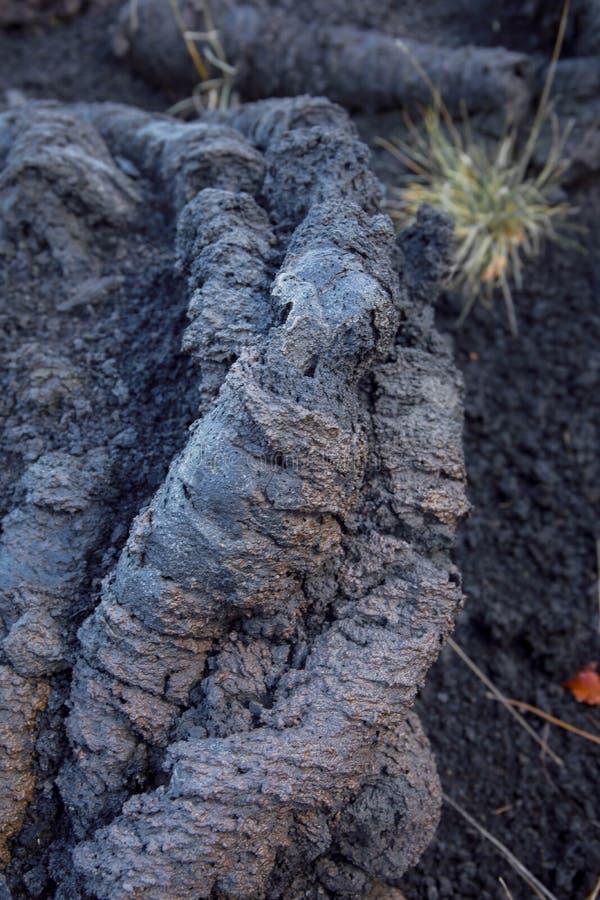 熔岩cordata细节在Etna西西里岛火山的 库存图片