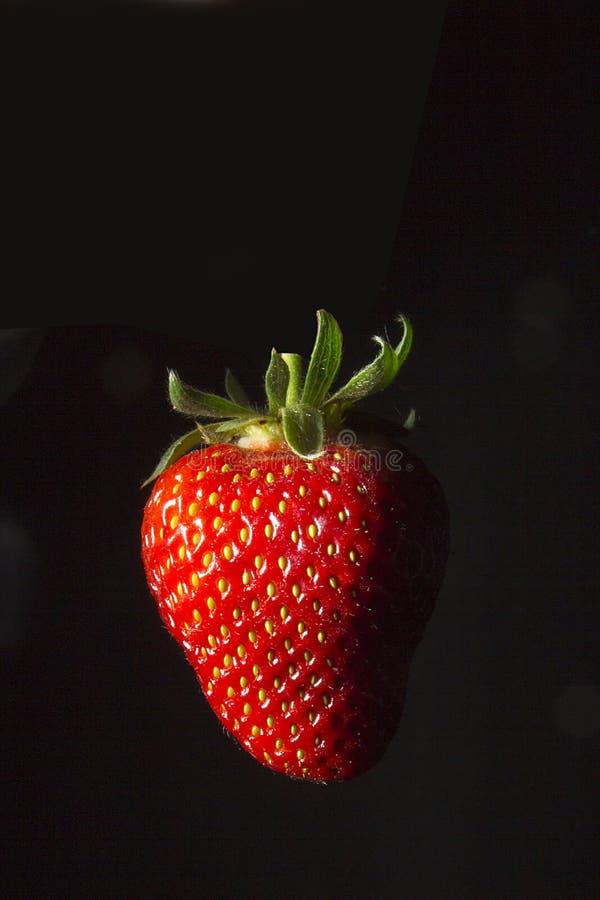 熟红草莓 库存照片