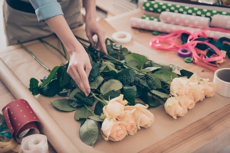 熟练的小企业代表性接触绿色顺序提议植物学floristry蓝色袖子衬衣播种的看法照片  库存图片