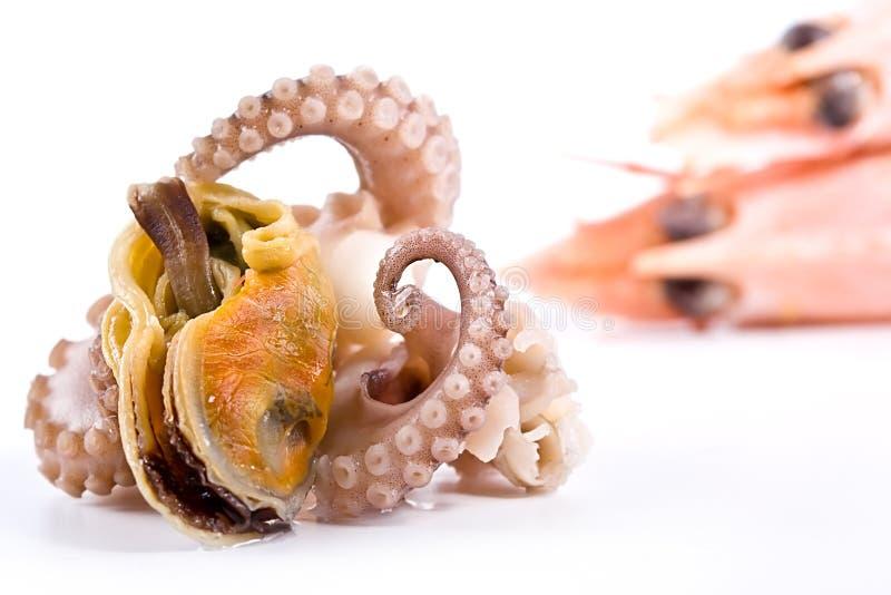 熟食海鲜 免版税库存照片