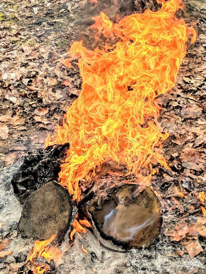 燃烧堆上的彩色火焰 免版税库存图片