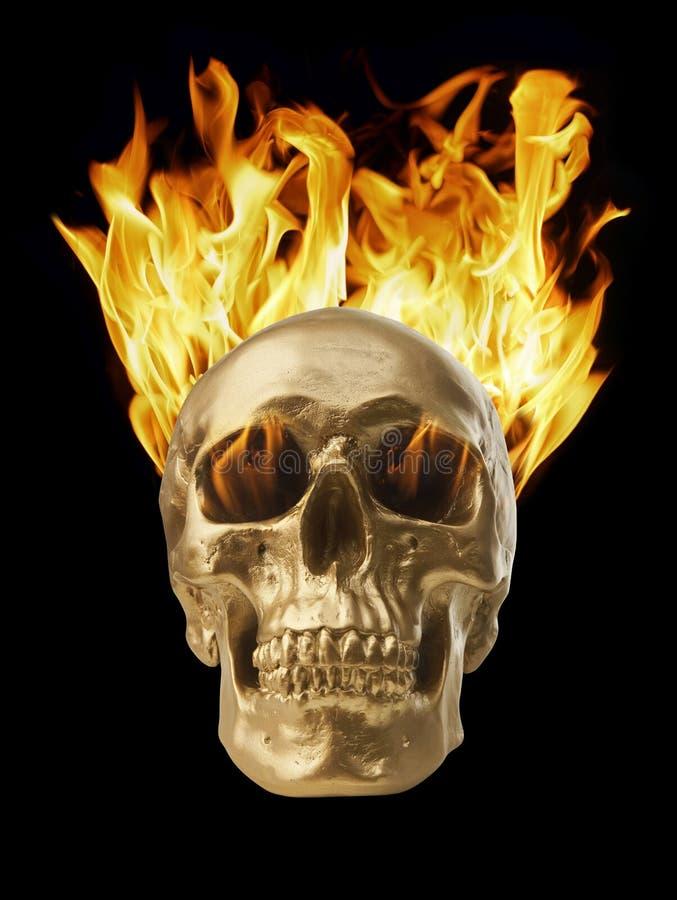 燃烧的头骨 库存照片