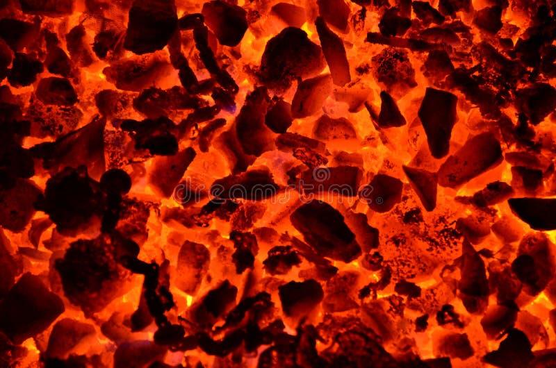 燃烧的煤炭硬煤罚款 库存照片
