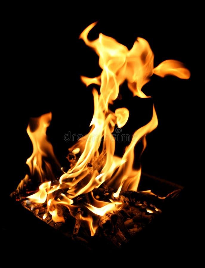 燃烧的营火 图库摄影