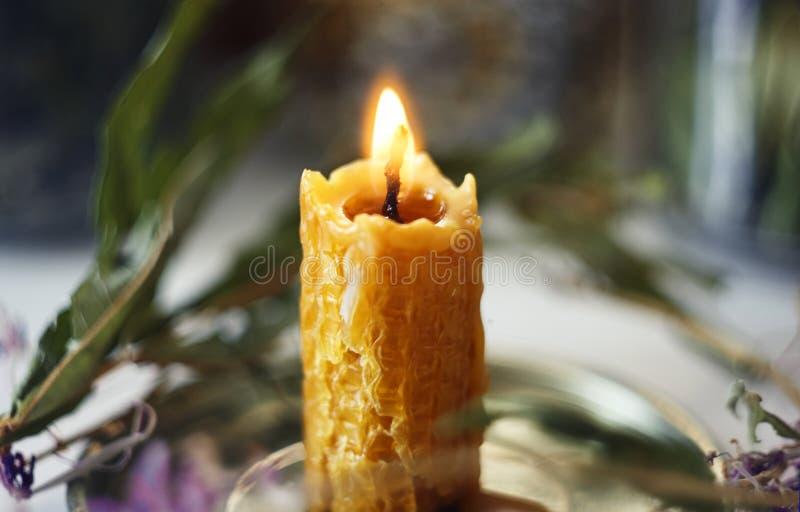 燃烧的蜡烛站立在植物中的做了自然蜡烧伤 库存图片
