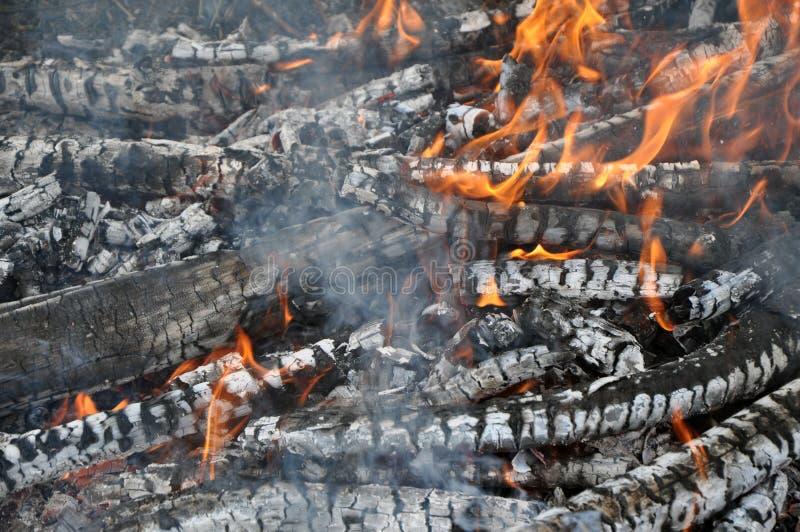 燃烧的oggr,热的炭烬 烤肉,格栅,kebab 免版税图库摄影