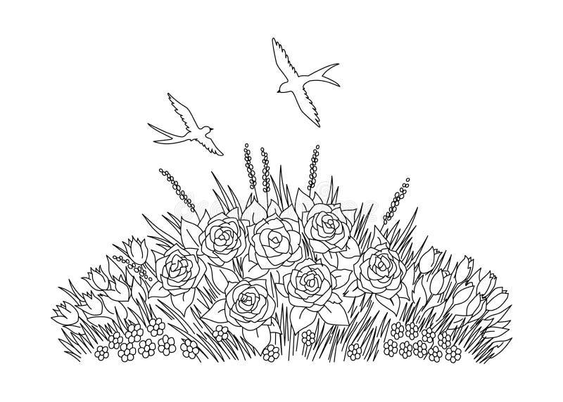 燕子乱画与在白色背景的花 上色花圃 库存例证