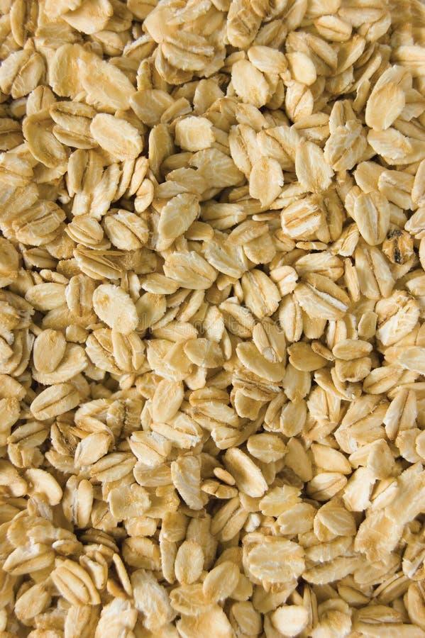 燕麦粥背景纹理,滚动的未加工的燕麦,详述的垂直的织地不很细宏观特写镜头样式 免版税库存图片