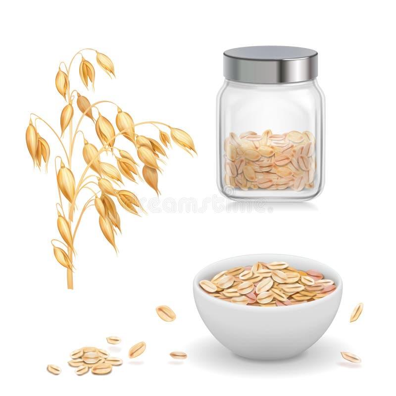 燕麦,燕麦在玻璃剥落 燕麦粥和muesli在白色碗现实传染媒介象 向量例证