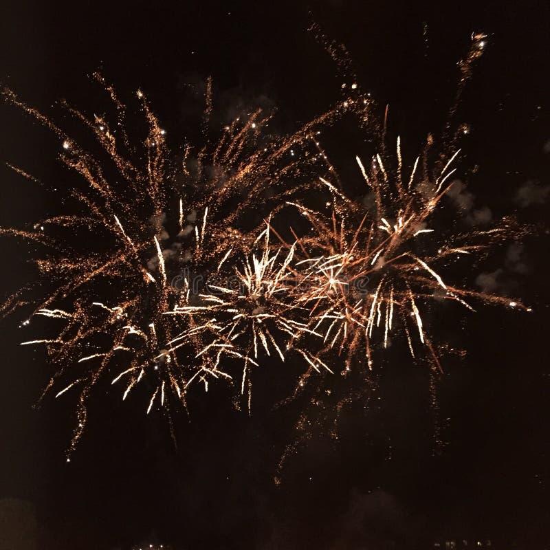 爆炸在夜空的烟花 免版税库存图片
