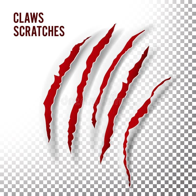 爪抓痕传染媒介 爪划痕 熊或老虎爪子爪抓痕 切细的纸张 库存例证