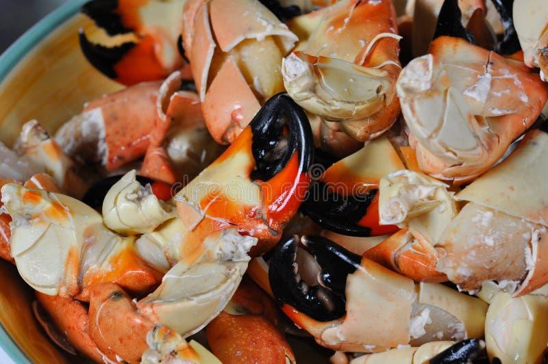 爪螃蟹石头 库存图片