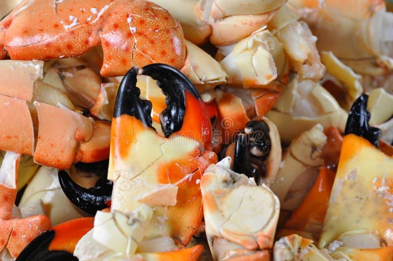 爪螃蟹石头 库存照片