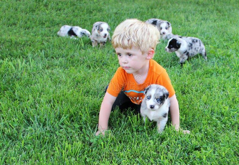 爬行与在草的小狗的小孩 图库摄影