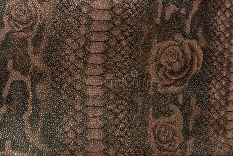 爬行动物的纹理皮肤 免版税库存图片