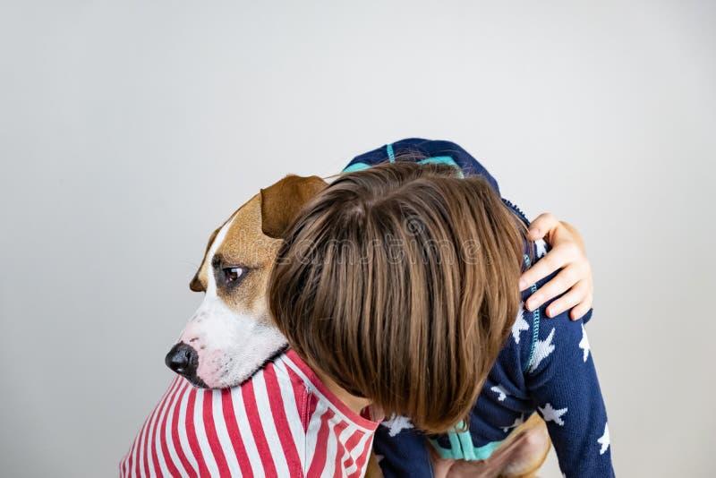 爱和仁慈对动物概念 库存图片