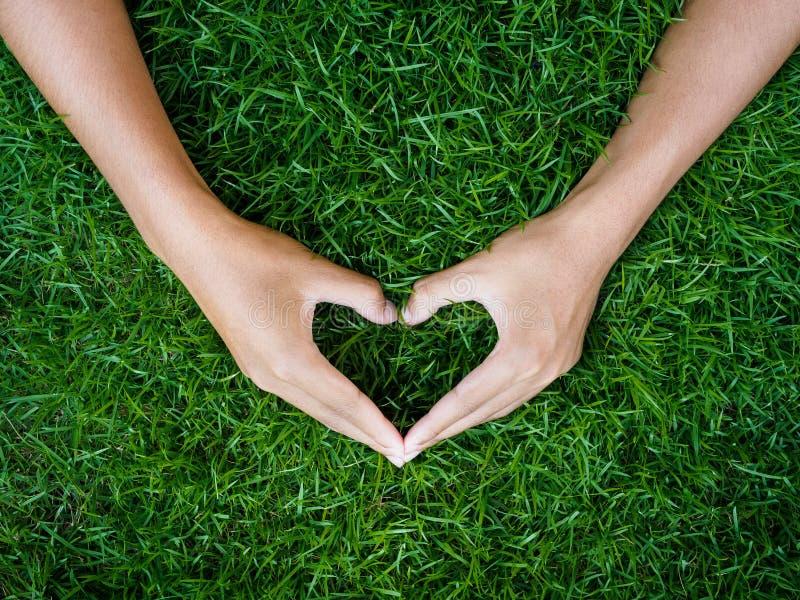 爱和华伦泰` s天概念 在心脏形状的男性手  免版税图库摄影