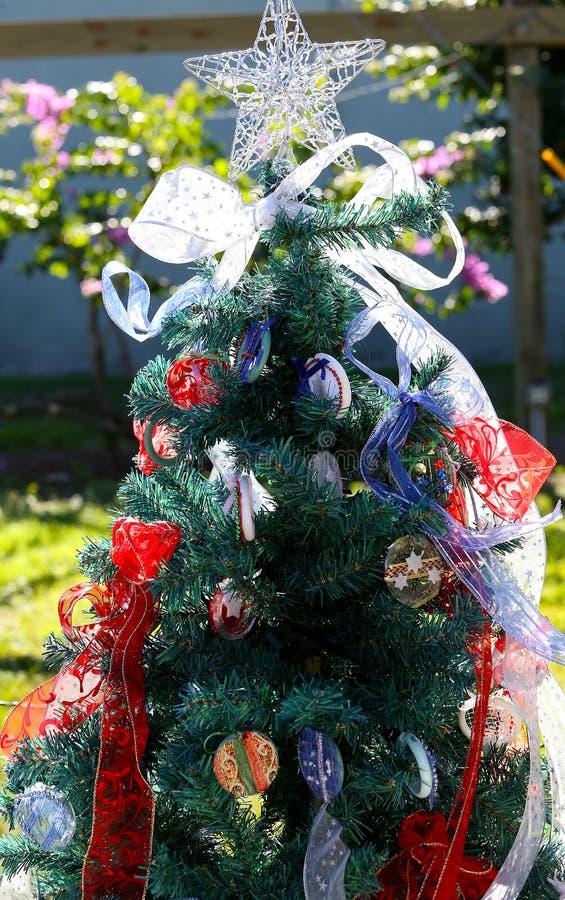 爱国圣诞树在迈尔斯堡,佛罗里达,美国中 免版税库存图片