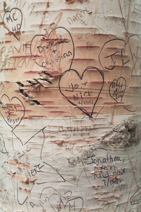 爱在树的消息在Lover's车道,绿色山墙遗产地方 库存图片