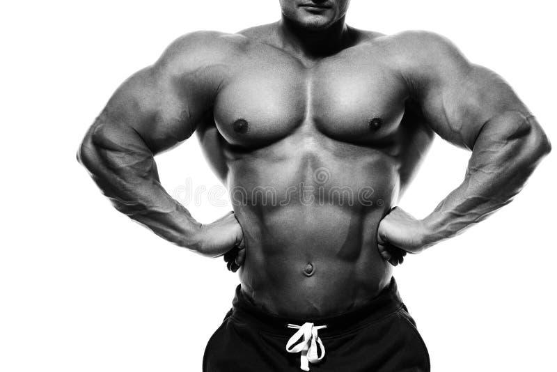爱好健美者摆在 英俊的力量运动人男性 健身mu 库存图片