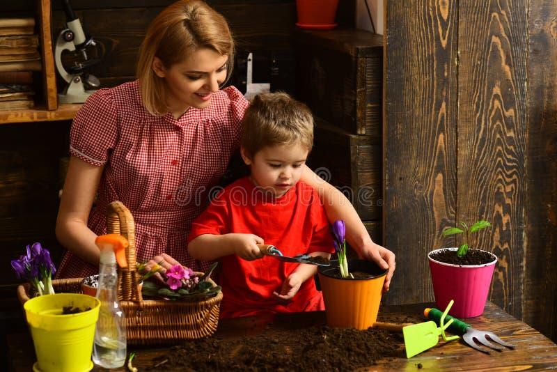 爱好概念 小孩种植在罐的帮助妇女花有土壤的,爱好 室内从事园艺作为爱好 享用系列 免版税图库摄影