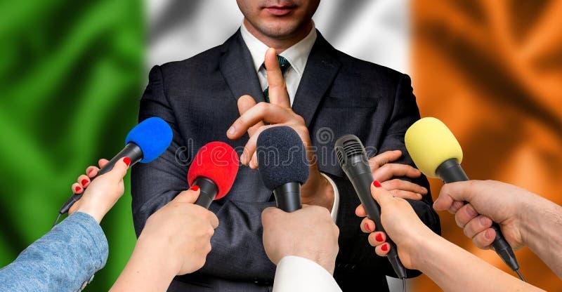 爱尔兰候选人与记者-新闻事业概念谈话 库存照片