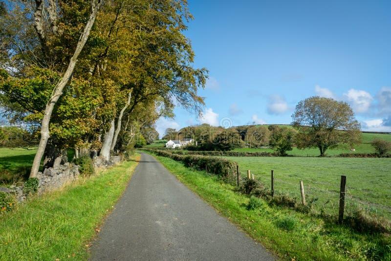 爱尔兰国家车道 库存图片