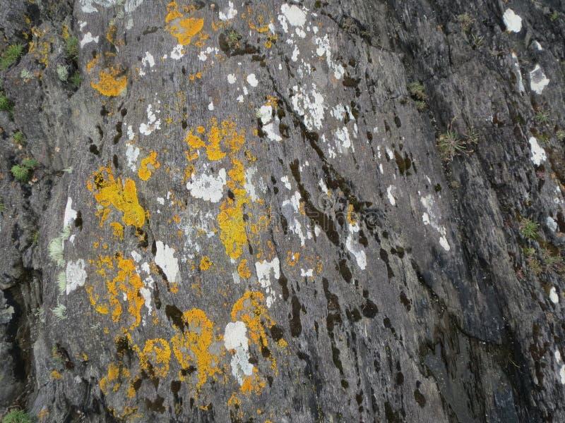 爱尔兰沿海岩石 免版税库存照片
