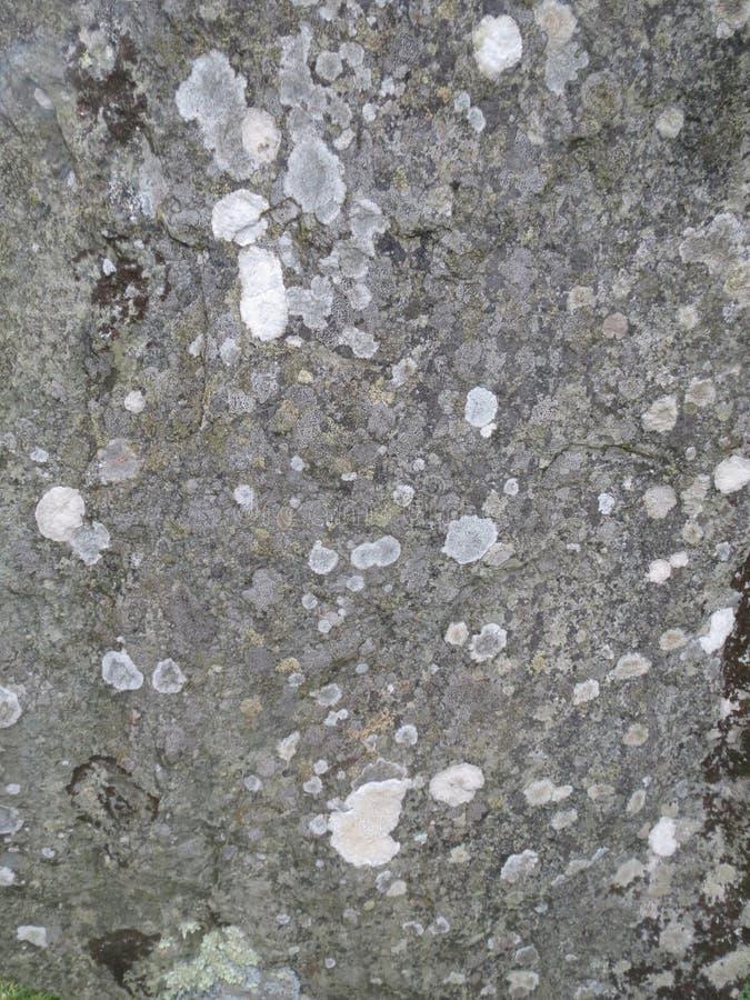爱尔兰沿海岩石 免版税图库摄影