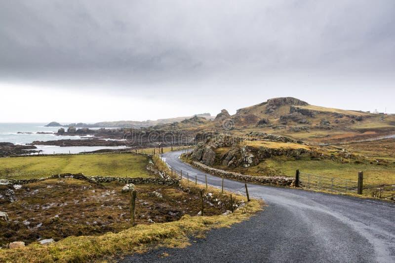 爱尔兰沿海路 免版税库存照片