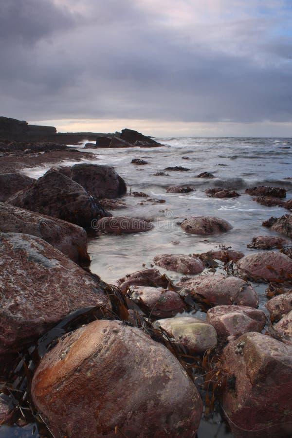 爱尔兰海洋岸 免版税库存照片