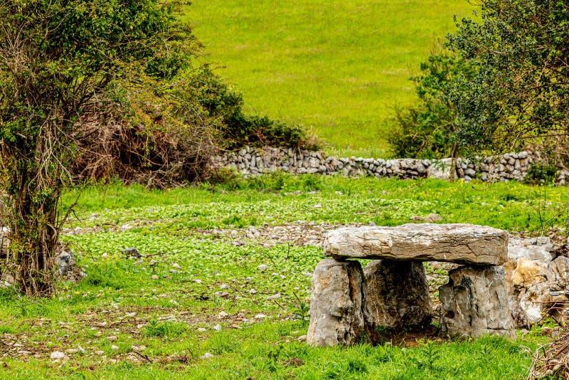 爱尔兰都尔门在有绿草的一个草甸 免版税库存照片