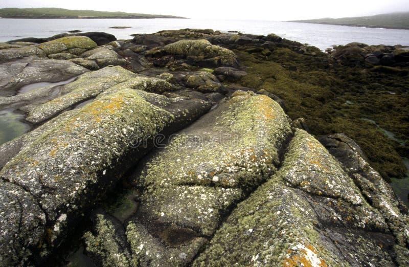Download 爱尔兰 库存照片. 图片 包括有 岩石, 海洋, 石头, 横向, 海运, 爱尔兰, 更加恼怒的, 欧洲, 海岸 - 60380