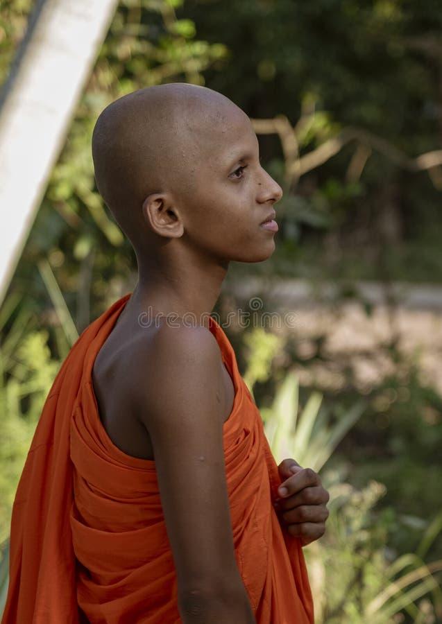爱德内贡博,斯里兰卡- 2019-03-22 -孤立年轻修士调查距离 库存照片