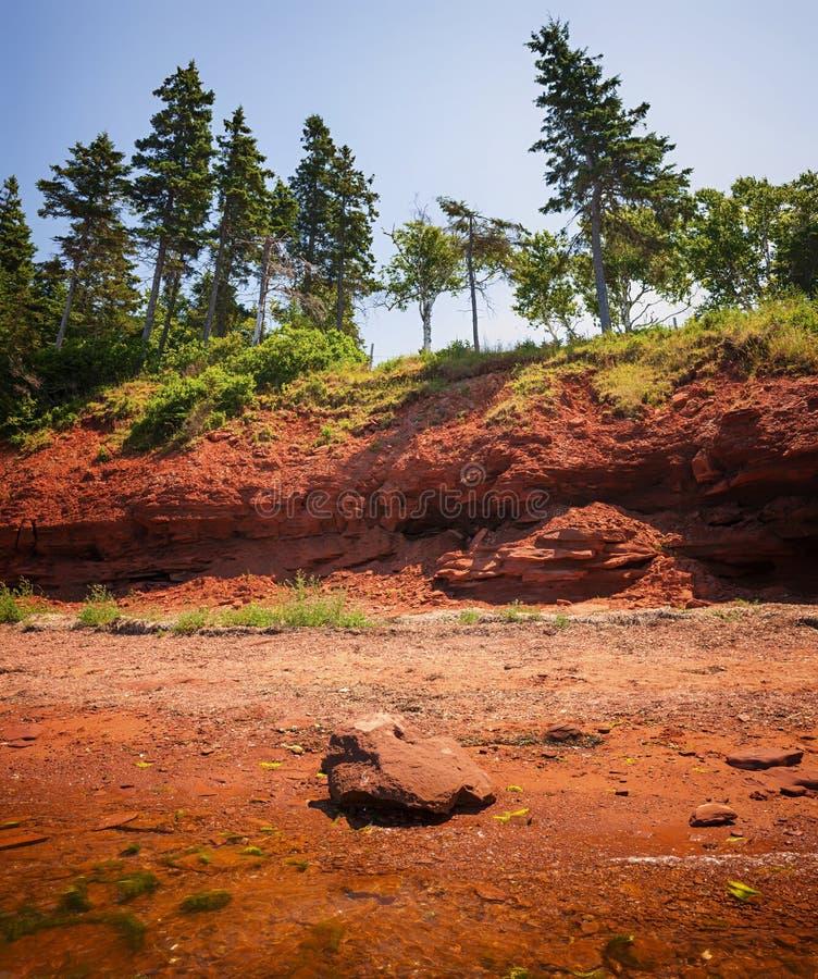 爱德华王子岛红色岸  库存图片