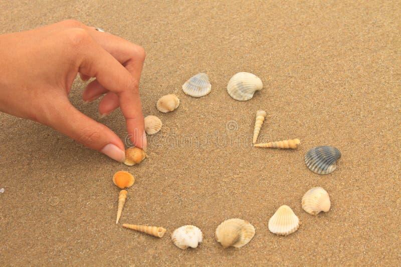 爱心脏由壳做成在海滩 库存图片